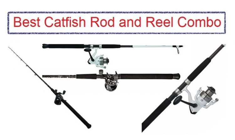 Best Catfish Rod and Reel Combo [Reviews 2020] | Complete Buying